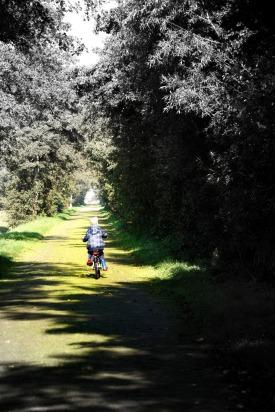 beau fietst3